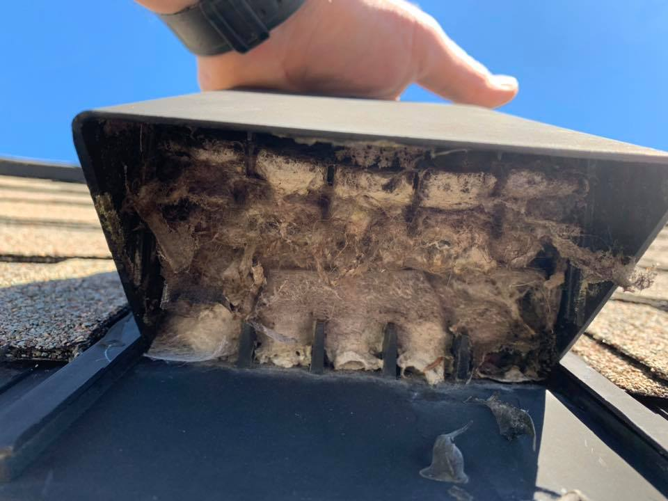 dryer vent cleaning maintance